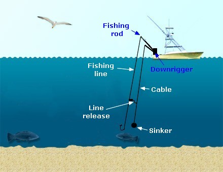 Sea angling hookline for Jig fishing tips